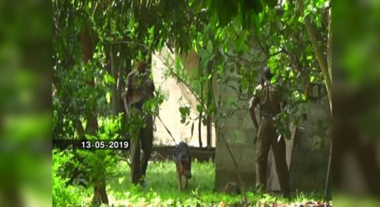 Weapons cache at Wellawaya: Public should be vigilant at this hour