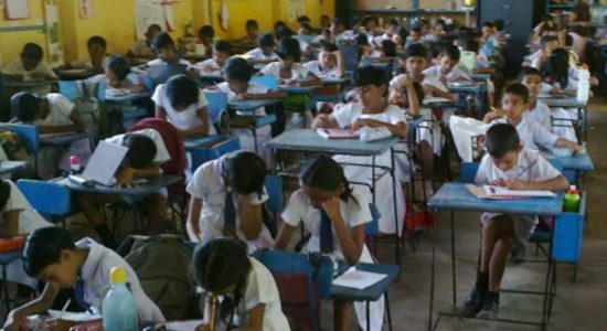 Primary school system on the verge of collapse