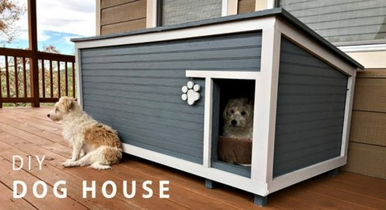 How to Build a Dog House…