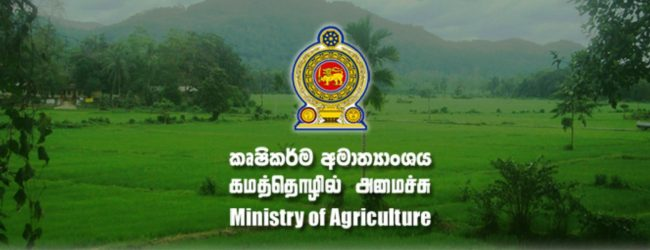 Measures to limit import of supplementary crops