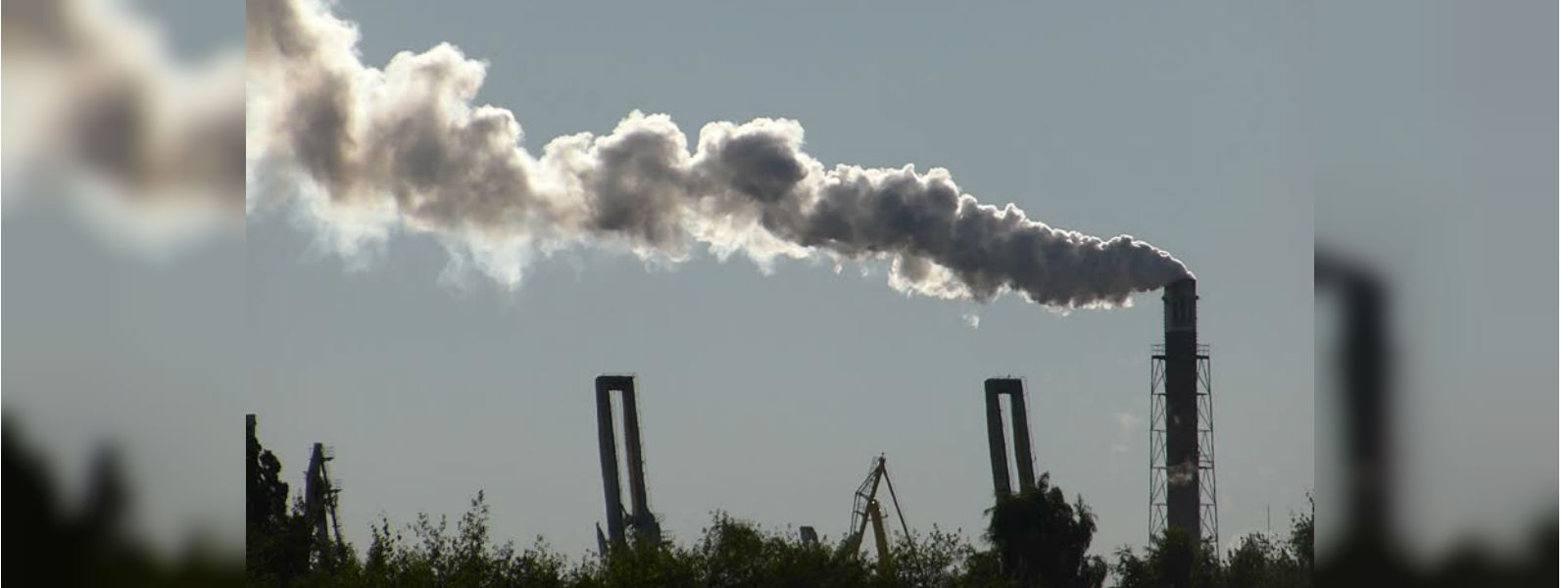 World Environment Day: Air pollution kills 4300 every year in Sri Lanka