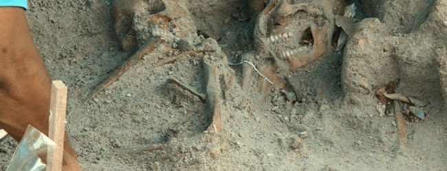 Mannar mass graves archaeological report delayed by one month