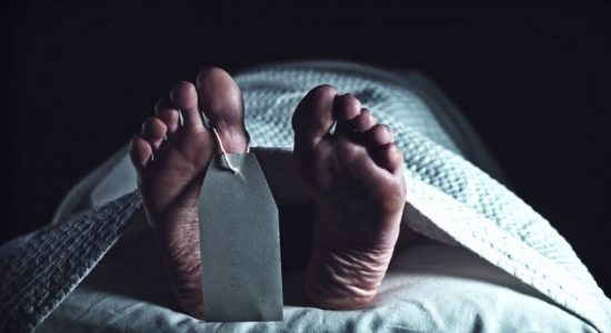 Two accidental deaths and a murder