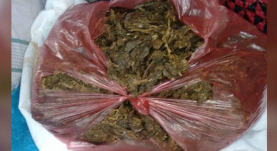 Four arrested with 6.45kg of Kerala ganja in Mihintale