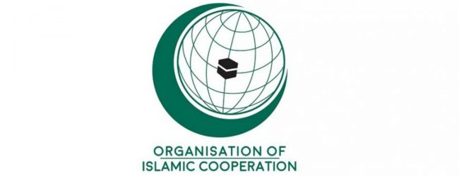 OIC countries urge Government to prevent communal violence