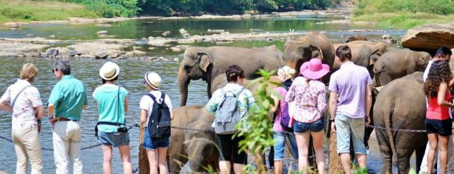 SRI LANKA TOURISM IN PERIL