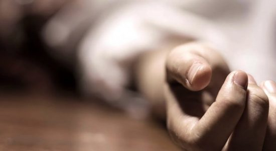 Woman murdered, killer attempts to commit suicide