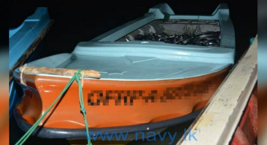 Navy arrests 31 over illegal fishing