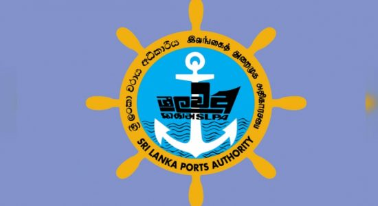 Ports Authority alone in the fight against Eastern Container Terminal MoC