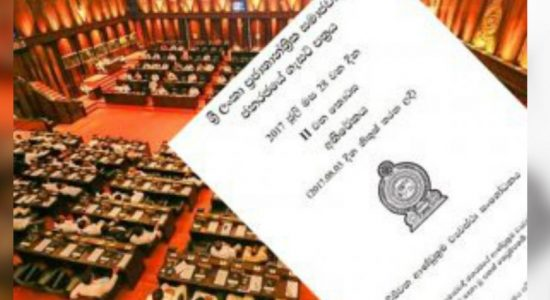 Call to abolish 19th amendment: In best interest of country
