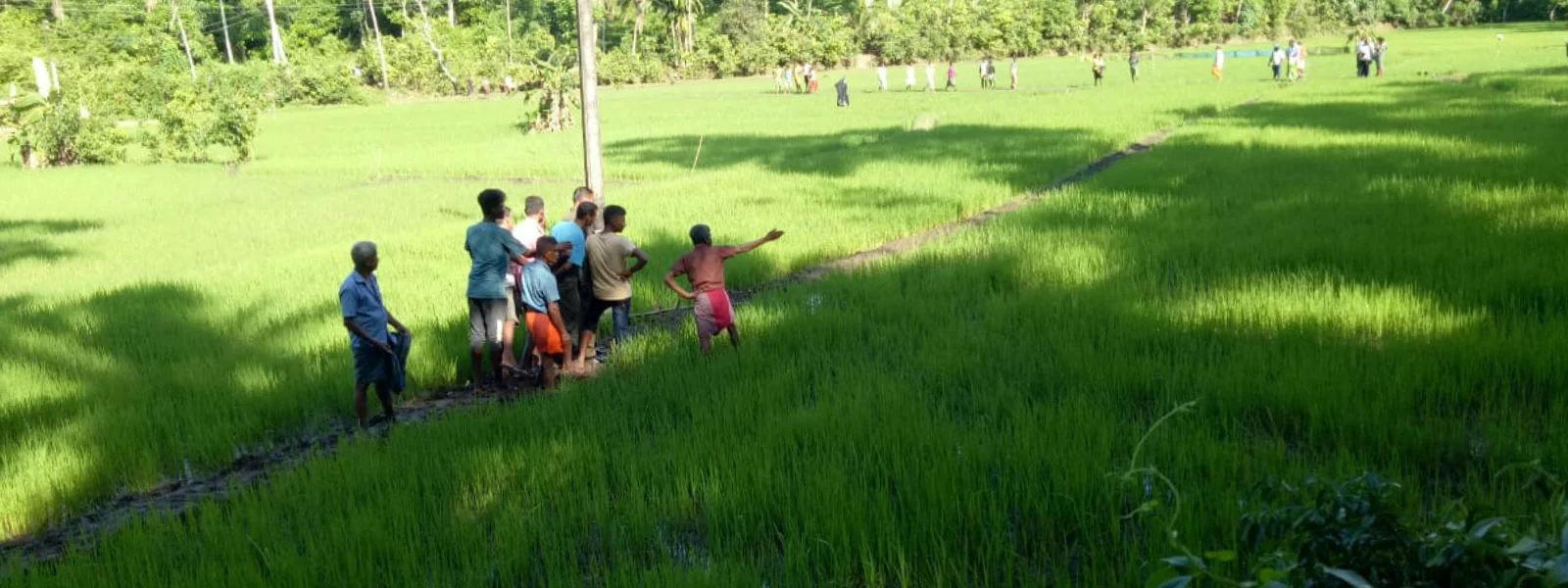Three electrocuted in wild boar trap at Akuressa