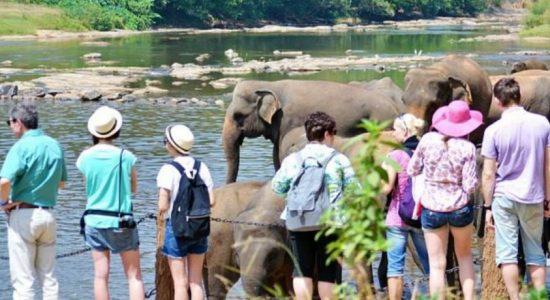 SRI LANKA TOURISM IN PERIL