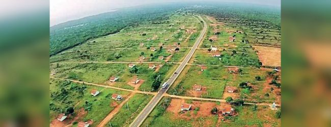 No more approvals to clear land in Kalaru – DG Forest Conservation