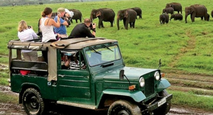Tourism on the recovery: Additional measures to revive tourism