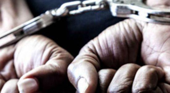 17 people arrested for damaging property at Blumenthal estate
