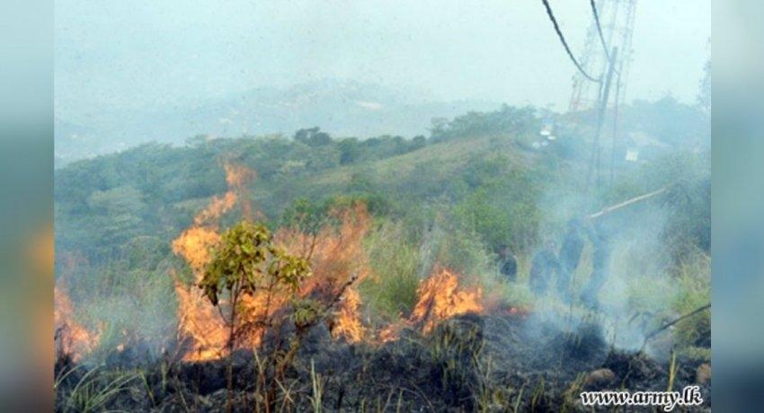 Maragala mountain wildfire destroys 500 acres
