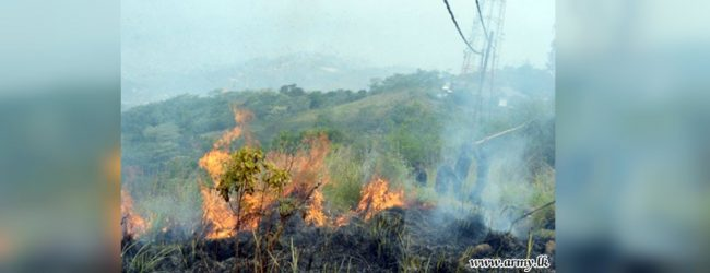 Maragala mountain wildfire destroys 500 acres
