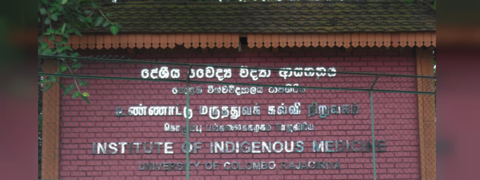 Indigenous Medicine institute of Colombo University shuts down