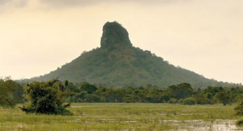 Central Cultural Fund makes a remarkable archaeological discovery from Thoppigala