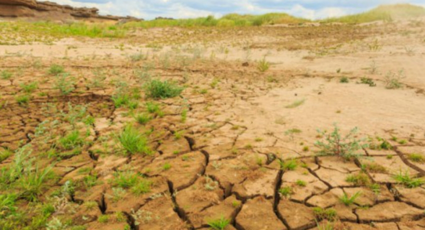 Extreme dry weather worsens : 550,000 seriously affected
