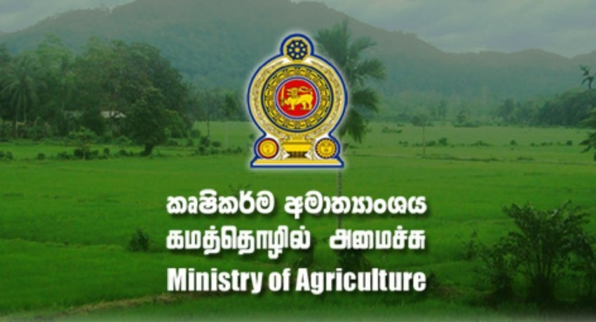 Rs 21 million rental for the Ministry of Agriculture building