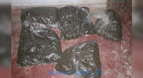 Two nabbed with 9.59 kilos of KG