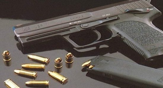 Two arrested from Dodanduwa with firearms