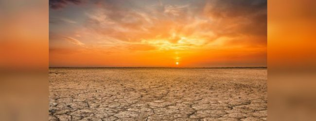Earth experiences hottest June on record: WMO