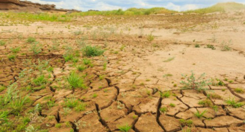 People affected by dry weather tops 550,000