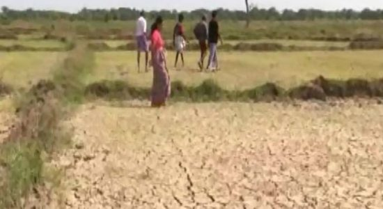 Compensation for distraught farmers