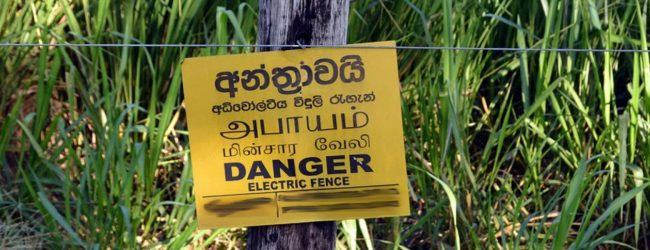 Investigations reveal main cause for electric fence breakdown