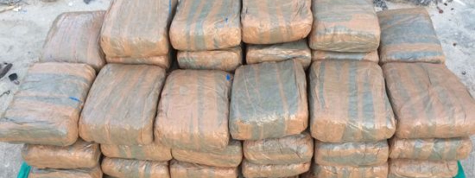 Navy & Police uncover 122.5kg of Kerala cannabis in Jaffna