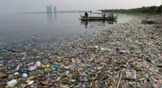30% of rivers polluted due to garbage – Irrigation Department