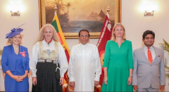 New European envoys call on President
