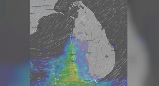 Prevailing showery conditions to enhance