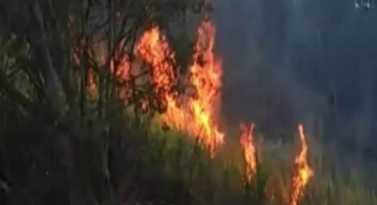 Fire erupts in Maragala mountain once again