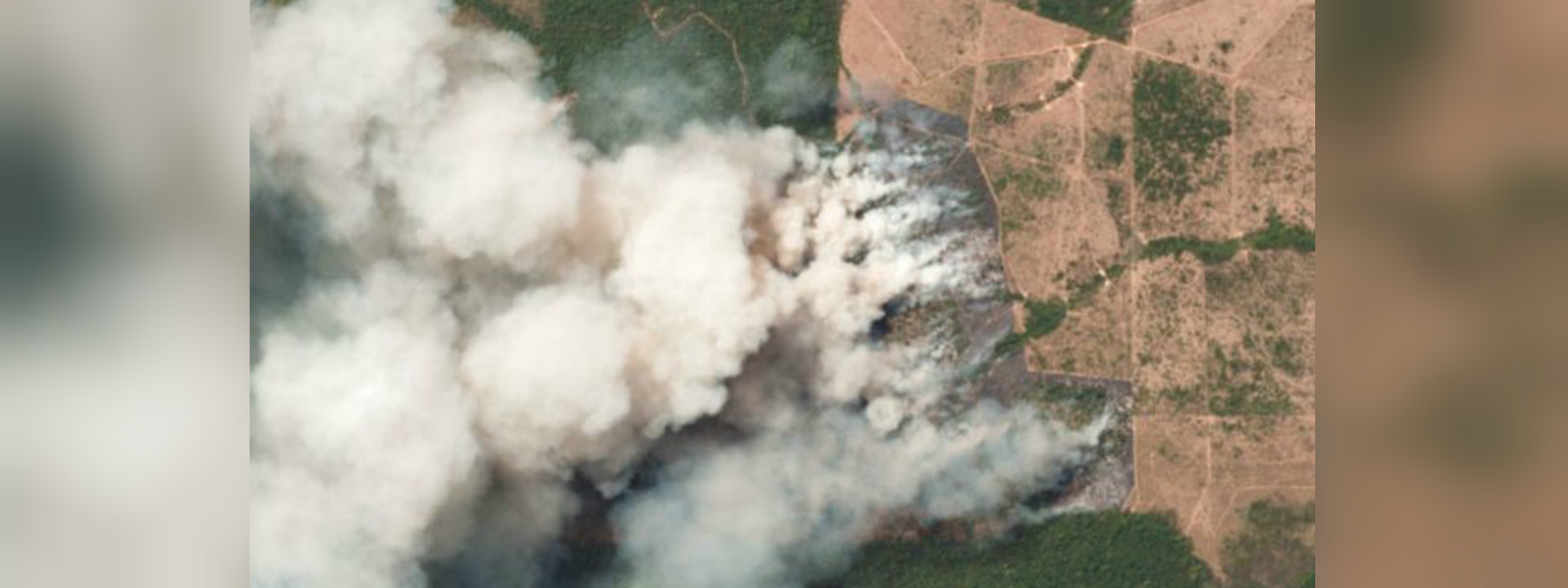 The Amazon is on fire – how bad is it?