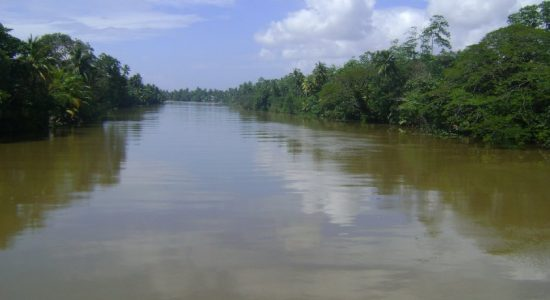 Water levels of Kelani, Kalu and Gin rivers rising