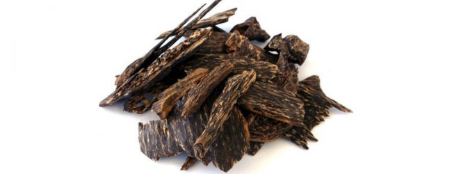 Agarwood worth Rs. 3.6 million seized at BIA