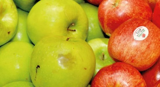 Apples not fit for consumption being sold