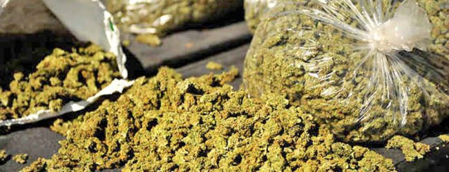 2 suspects including a police officer arrested with Kerala ganja
