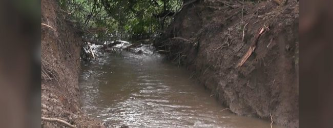 Many lives at risk due to leak in Hunupalagama tank bund