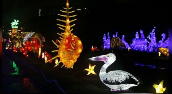 Under the sea: giant sea creature lanterns light up Paris