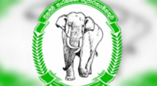 Wildlife monitoring officers to commence work-to-rule action