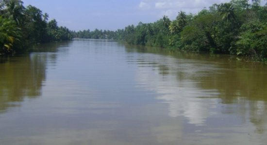 Kelani river water at risk of rapid contamination