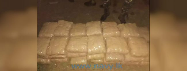 Navy arrests man with 83kg of Kerala Cannabis