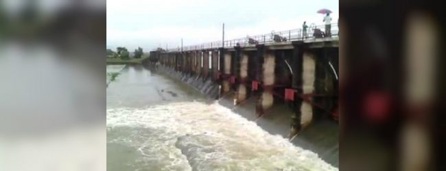 Four sluice gates of Iranamadu tank opened – DMC