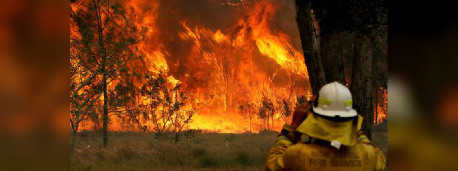 Thousands evacuated from Australian tourist haven as bushfires rage