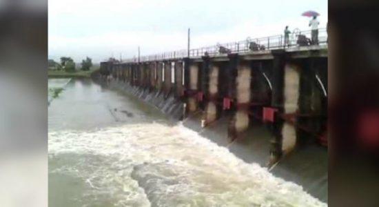 Four sluice gates of Iranamadu tank opened – DMC