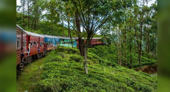 Train derails along the Upcountry railway line